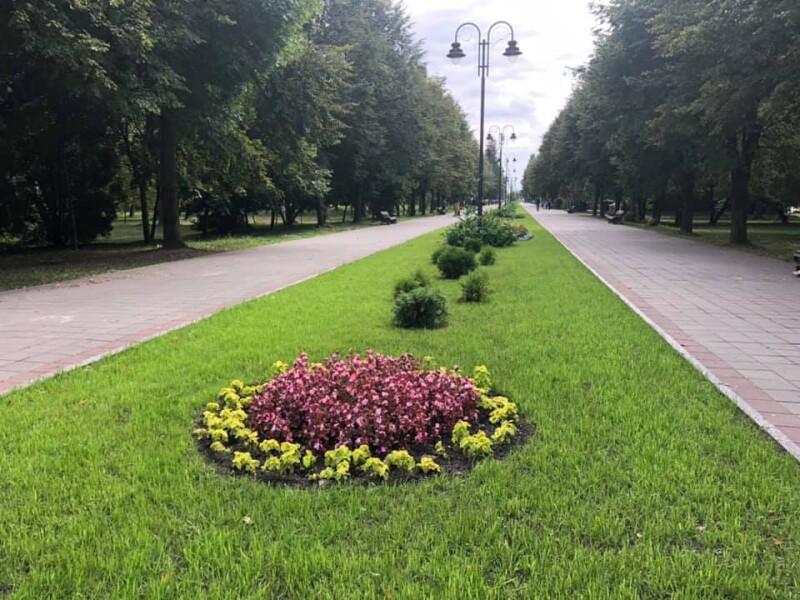 У центральному парку Луцька облаштують парковку за 875 тисяч
