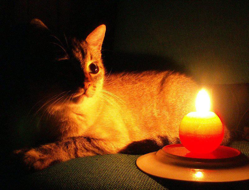 Де в Луцьку не буде світла в четвер, 23 вересня